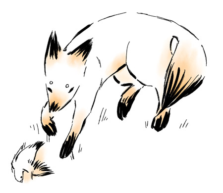 Fox and Dove